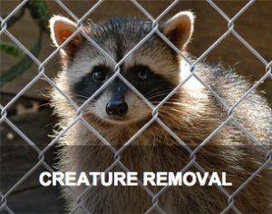 Creature Removal