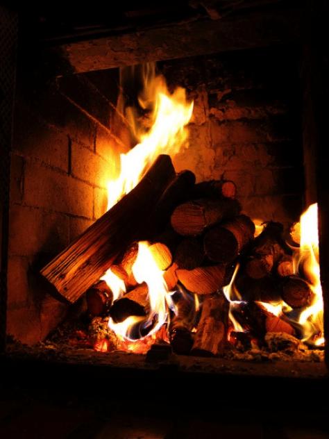 Gas Versus Wood Burning Fireplace Chimney And Wildlife